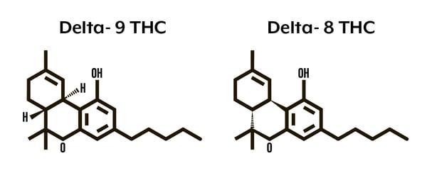 delta-8 vs delta-9 thc