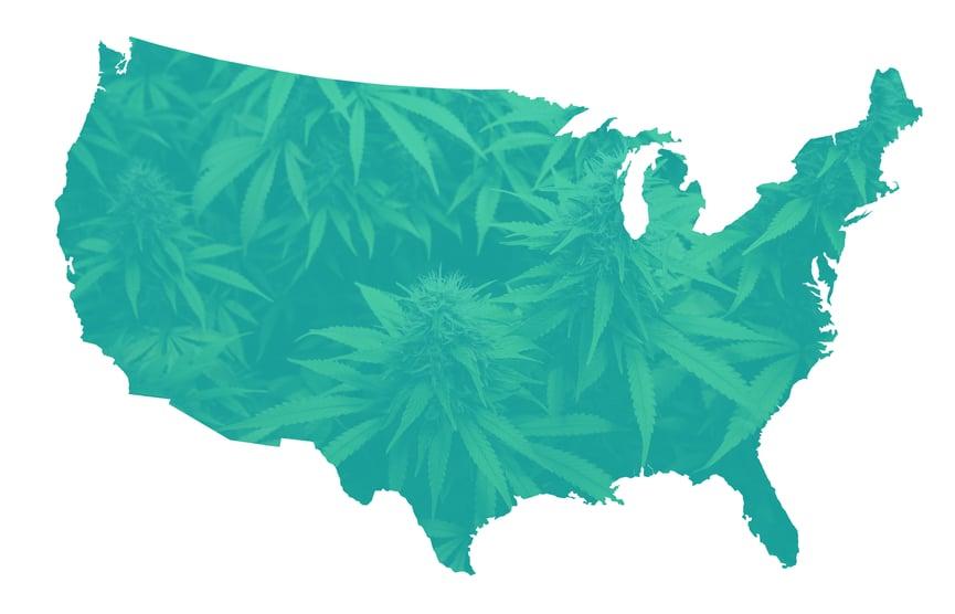 US-cannabis-demographics